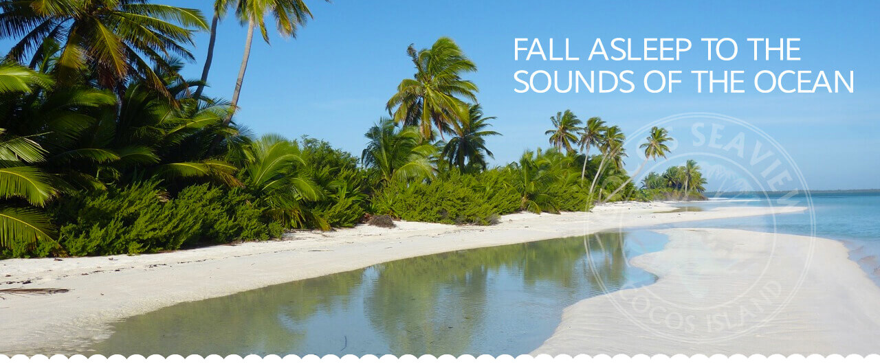 Fall Asleep to the Sounds of the Ocean